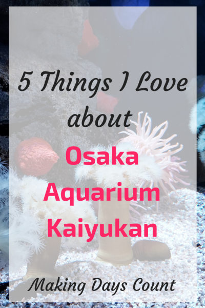 Osaka: 5 Things I love about the Osaka Aquarium
