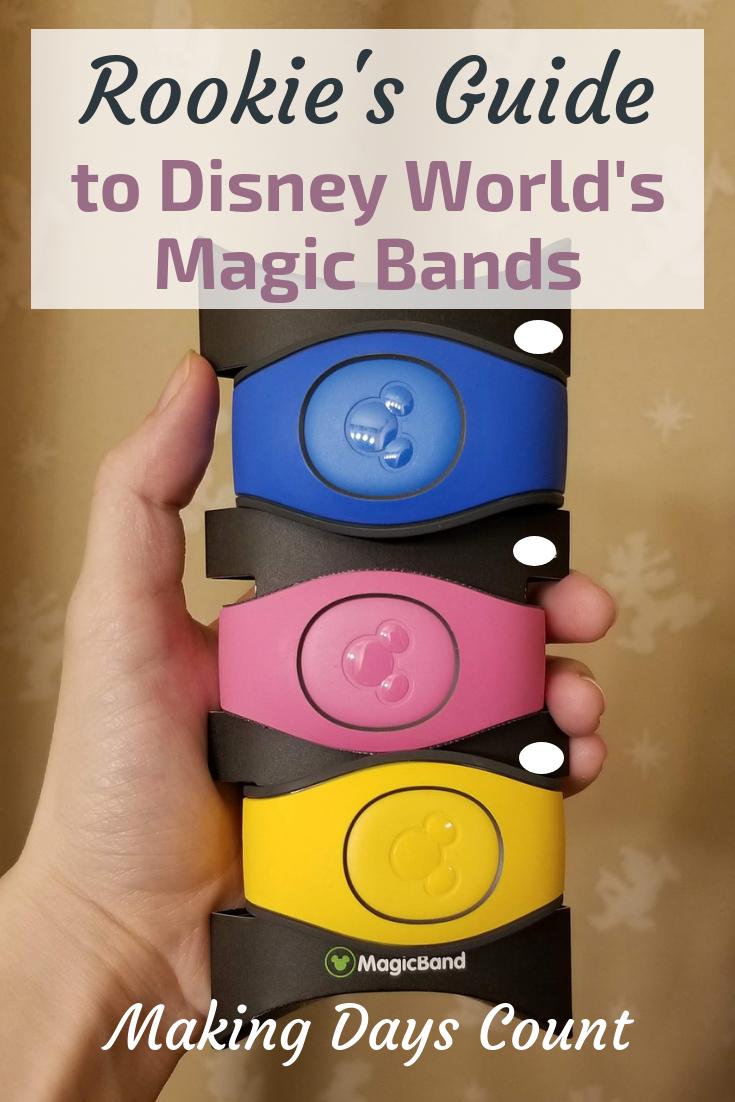 Disney World Magic Bands Pin