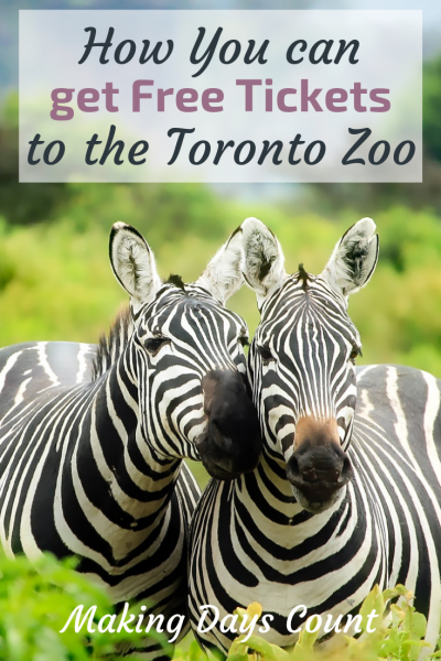 How to get Free tickets to the Toronto Zoo