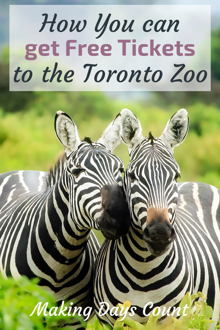 Free Tickets to the Toronto zoo