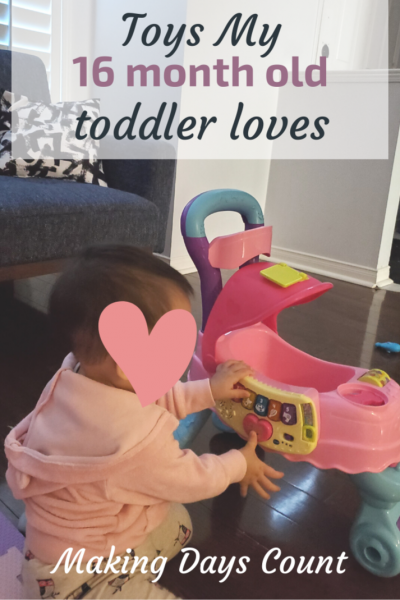 Toys My 16 Month Old Toddler Loves