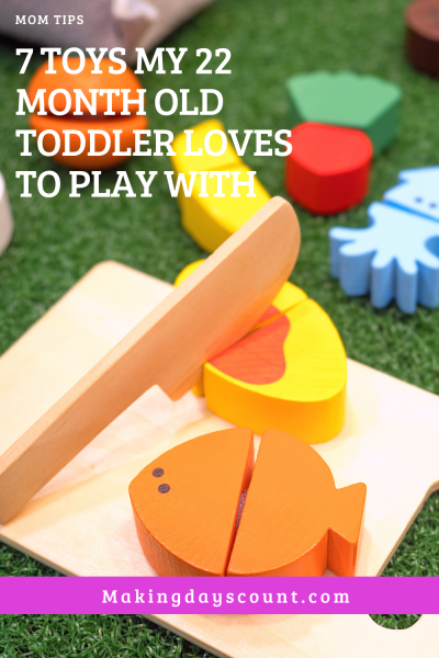 Toys my 22 month old toddler loves