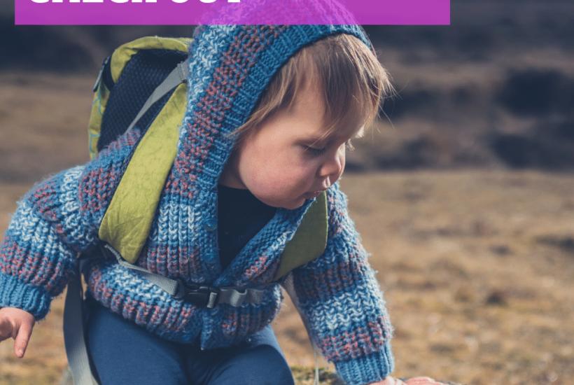 toddler day trip tips
