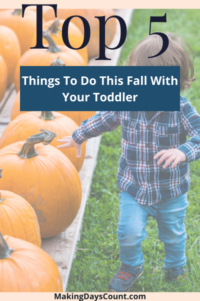 5 Budget Fall Things To Do With a Toddler